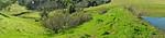 Panorama - Turtle Pond