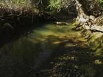 Sinbad Creek Sunny R&R Spot