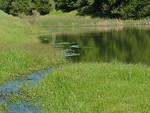 Turtle Pond Spillway