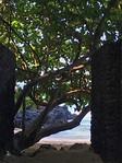 Makena Cove