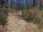 AFTER Trail Widening